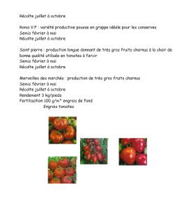 fiche legumes8