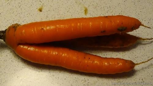 carottes002-min.md.jpg
