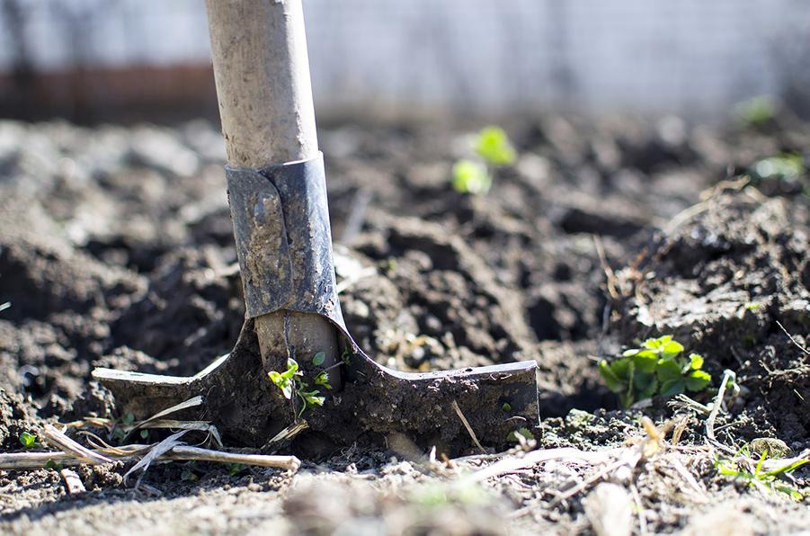 Les outils à main de jardinage