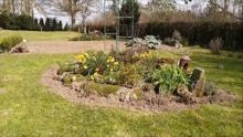 Visite de mon jardin en cette période de confinement